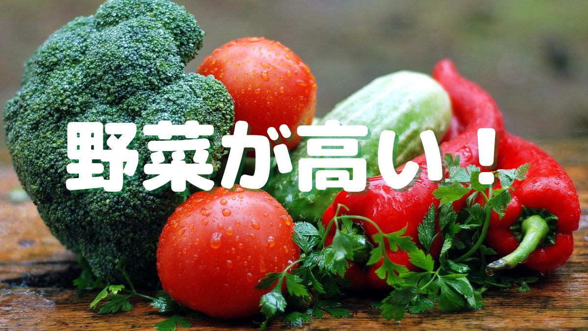 野菜が高いなら代わりに「〇〇〇」使ってみるというのはどう?